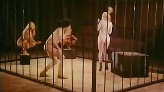Brazzers xxx: Jamie Gillis, Sam Grady, Chris Anderson in classic sex video